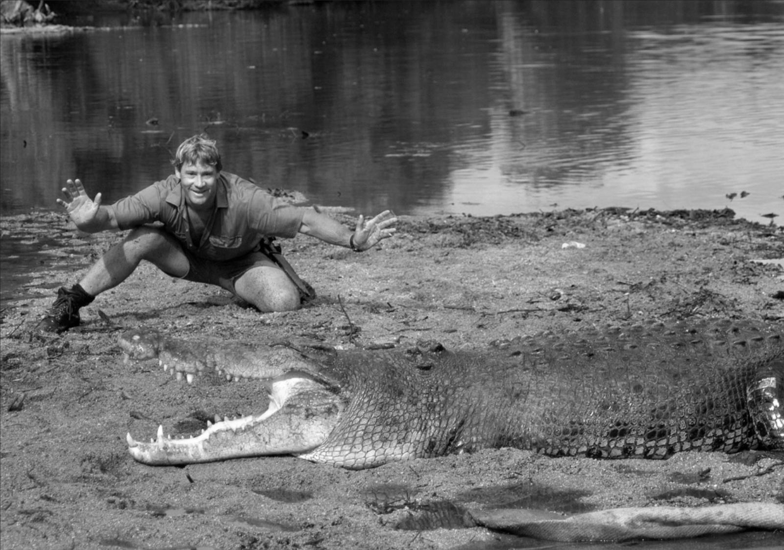 How To Give A Hug To A Crocodile